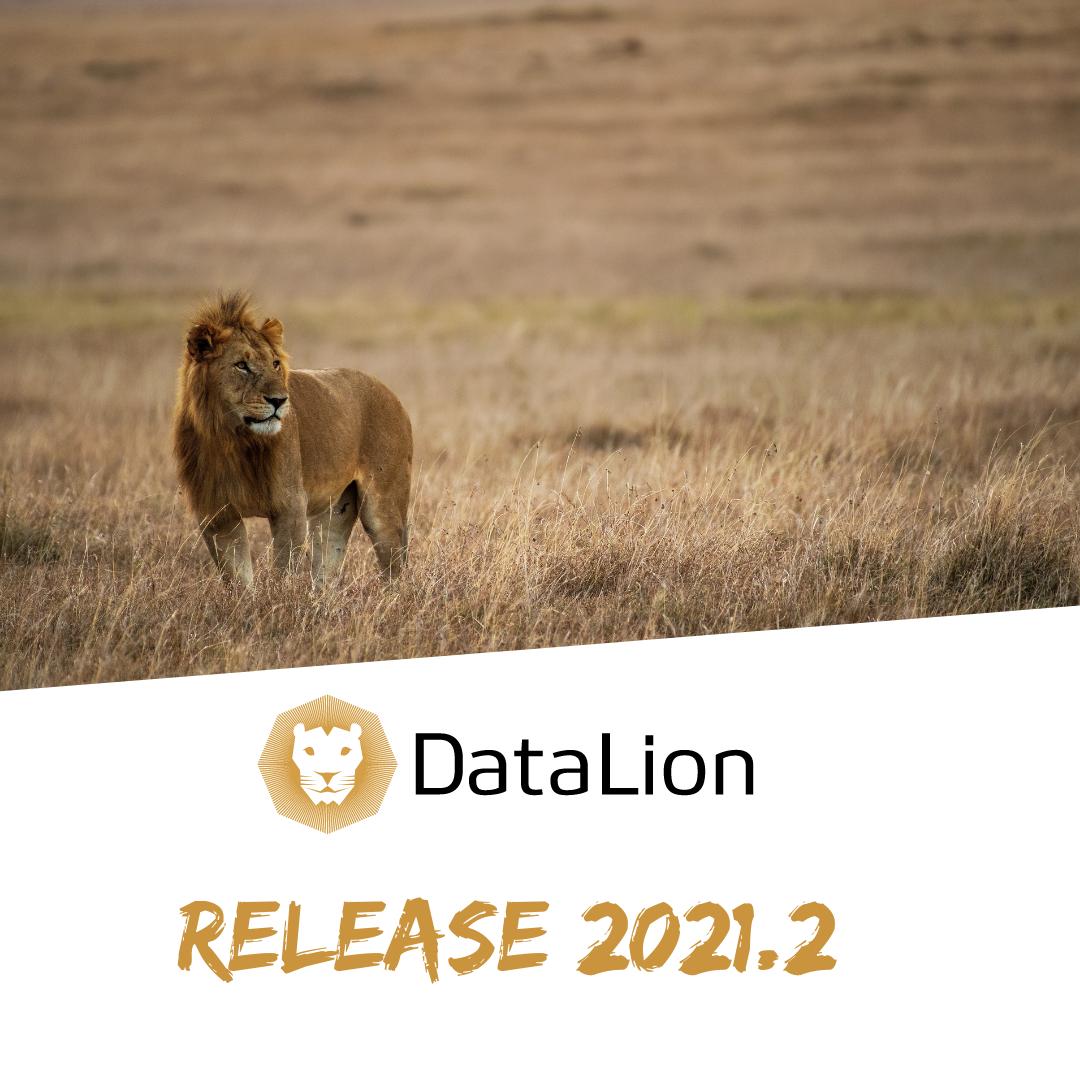 DataLion updated dashboard software 2021.2 free webinar